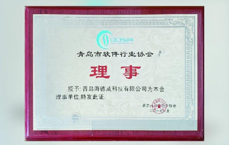 Council Member of Qingdao Software Industry Association